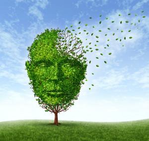 Come-migliorare-la-Memoria