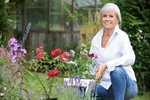 Osteoporosi e menopausa